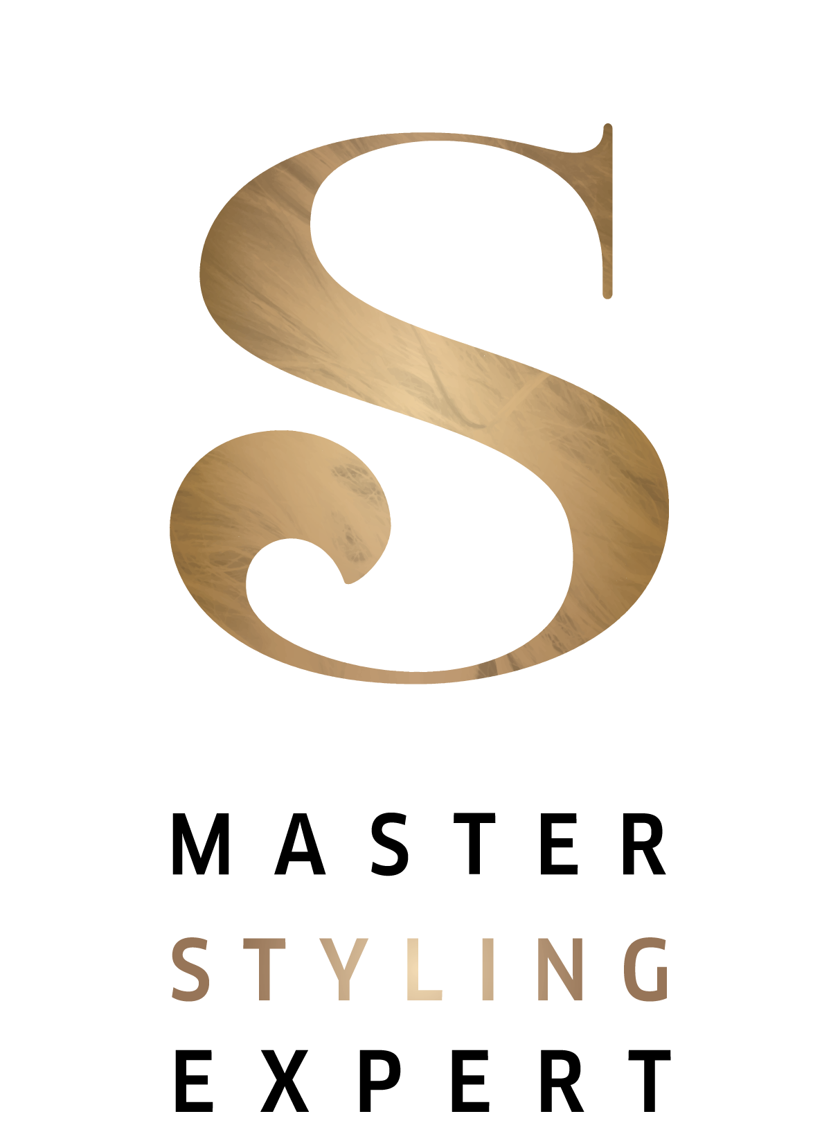 Image for Seminar: Master Styling Expert